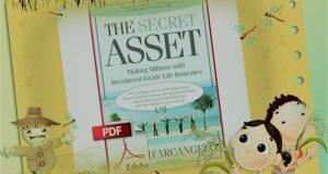 The Insurance Secret Asset WSO Free