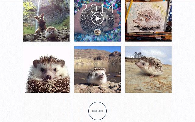 Download Instagram For Chrome – Fondos de Pantalla