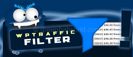 WP Traffic Filter Plugin
