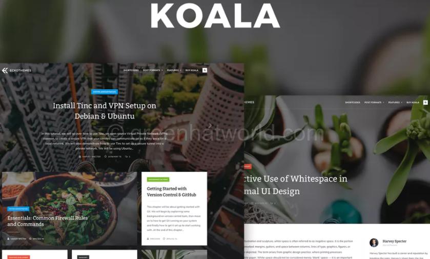 Best Adsense Optimized WordPress Theme