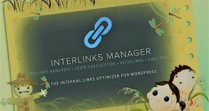 Best Interlinks Manager Wordpress Plugin
