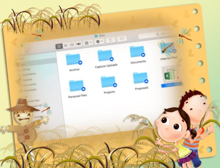Website Finder Desktop Tool