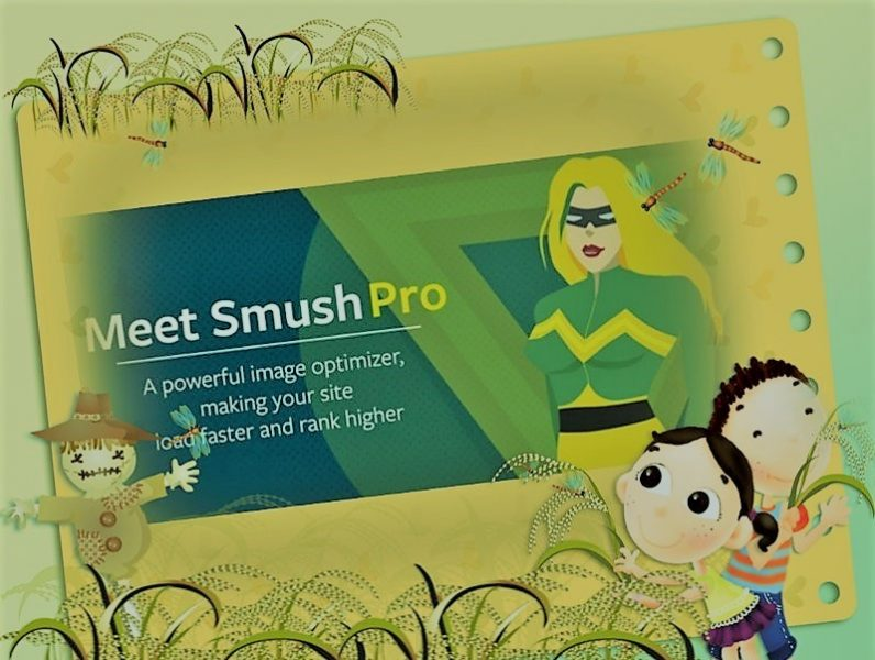 Wp Smush Pro Plugin For WordPress