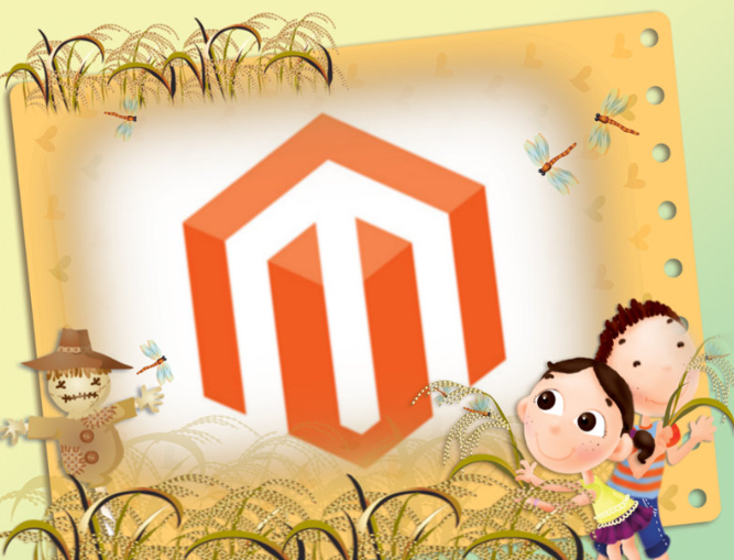 Magento Site Analyzer